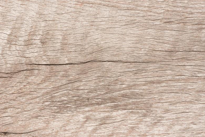 Shorea texture